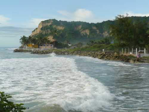 high tide 7