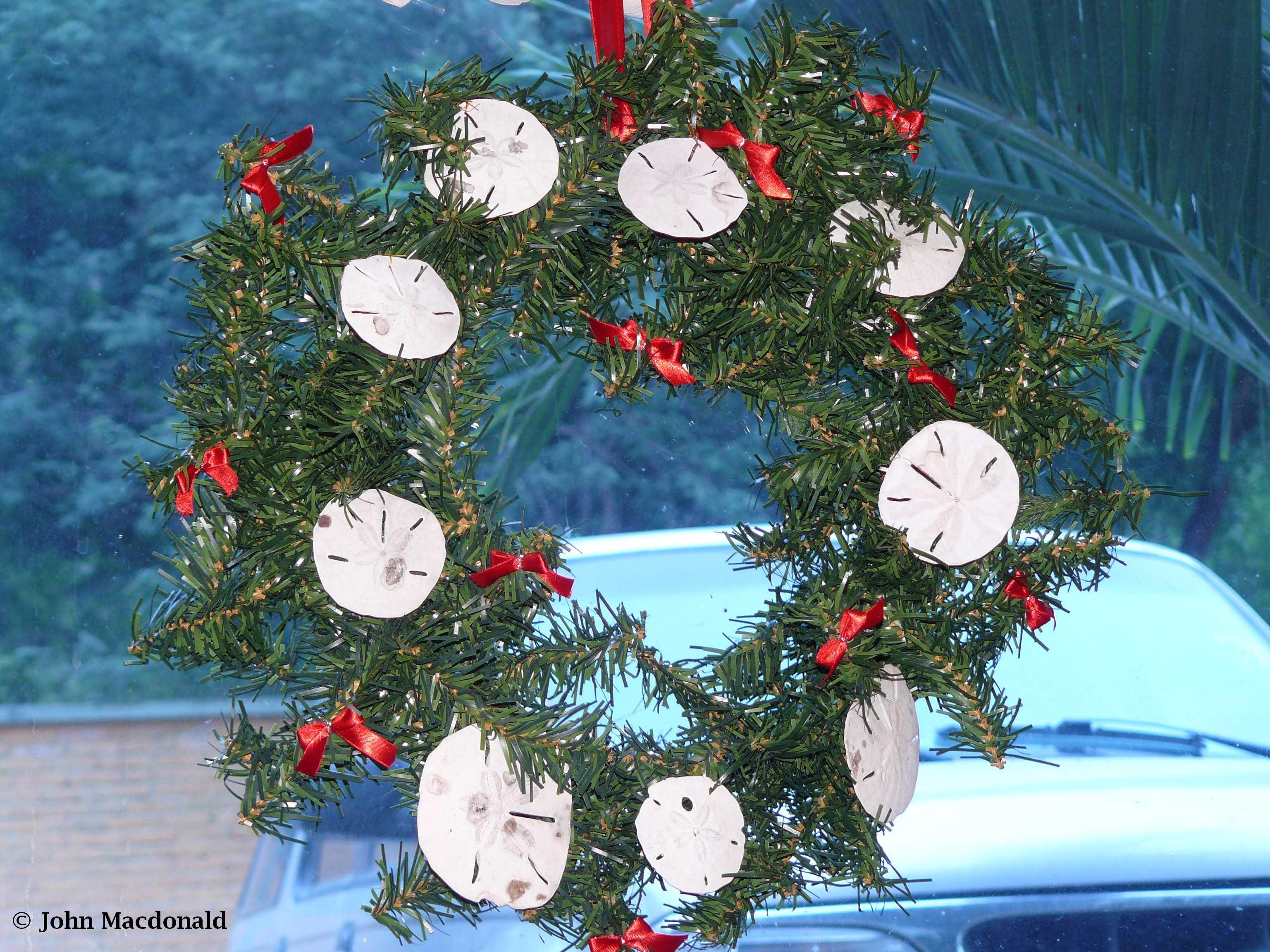 christmas is coming sand dollar wreath