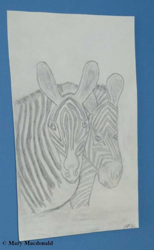 zebra use2