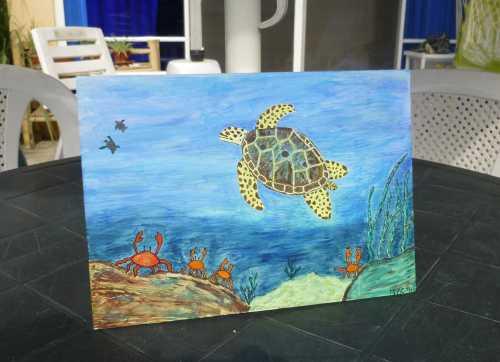 turtle use