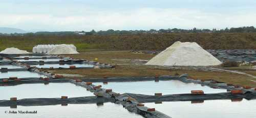 Drying ponds 5