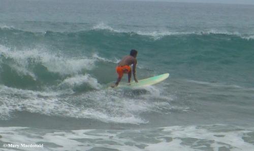 Surfer 1